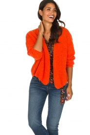 American Vintage |  Heavy knitted cardigan Boolder | orange  | Picture 4
