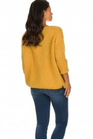 American Vintage |  Heavy knitted sweater Boolder | ochre yellow  | Picture 7