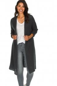 American Vintage |  Basic cardigan Vapcloud | grey   | Picture 2