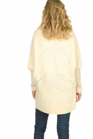 Rabens Saloner |  Cardigan Becky | natural  | Picture 5