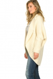 Rabens Saloner |  Cardigan Becky | natural  | Picture 4