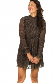 Freebird |  Dress with leopard print Katie | brown  | Picture 4