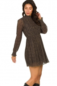 Freebird |  Dress with leopard print Katie | brown  | Picture 5