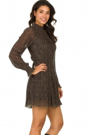 Freebird |  Dress with leopard print Katie | brown  | Picture 6