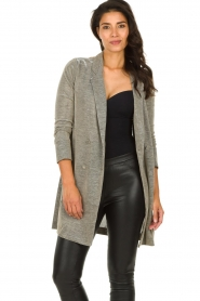 Freebird |  Long metallic blazer Emmy | metallic  | Picture 2