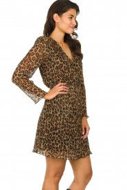 Freebird |  Dress with leopard print Evia | brown  | Picture 5