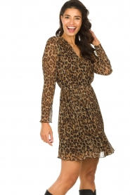 Freebird |  Dress with leopard print Evia | brown  | Picture 4