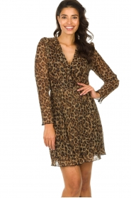 Freebird |  Dress with leopard print Evia | brown  | Picture 2