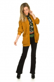 Dante 6 | Knitted ajour cardigan Encore | yellow  | Picture 3