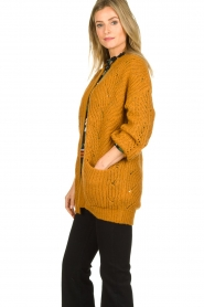 Dante 6 | Knitted ajour cardigan Encore | yellow  | Picture 4
