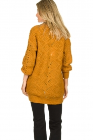 Dante 6 | Knitted ajour cardigan Encore | yellow  | Picture 5