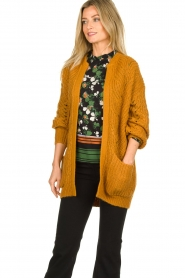 Dante 6 | Knitted ajour cardigan Encore | yellow  | Picture 2