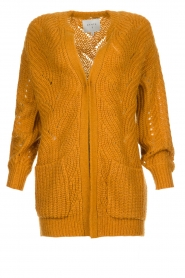 Dante 6 | Knitted ajour cardigan Encore | yellow  | Picture 1