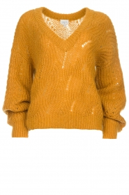 Dante 6 |  Knitted ajour sweater Eras | mustard  | Picture 1