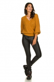 Dante 6 |  Knitted ajour sweater Eras | mustard  | Picture 3
