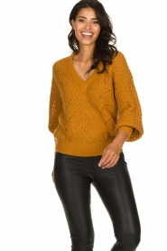 Dante 6 |  Knitted ajour sweater Eras | mustard  | Picture 2
