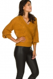 Dante 6 |  Knitted ajour sweater Eras | mustard  | Picture 4