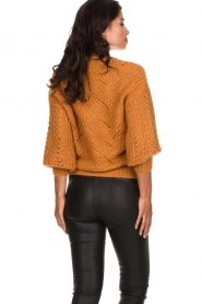 Dante 6 |  Knitted ajour sweater Eras | mustard  | Picture 5