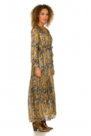 Dante 6 |  Printed maxi dress Arlette | multi   | Picture 4