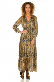 Dante 6 |  Printed maxi dress Arlette | multi   | Picture 3