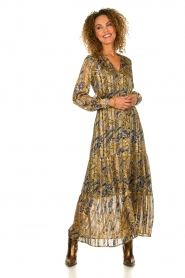 Dante 6 |  Printed maxi dress Arlette | multi   | Picture 2