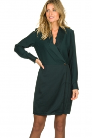 Dante 6 | Wrap dress Marigold | green  | Picture 2
