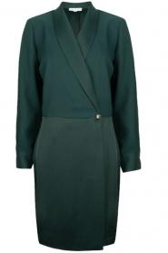 Dante 6 | Dress Marigold | green  | Picture 1