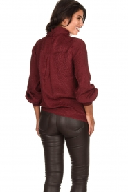 Dante 6 |  Leopard blouse with turtleneck Shay | burgundy  | Picture 5