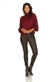 Dante 6 |  Leopard blouse with turtleneck Shay | burgundy  | Picture 3