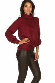Dante 6 |  Leopard blouse with turtleneck Shay | burgundy  | Picture 4