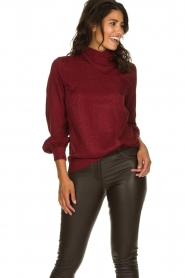 Dante 6 |  Leopard blouse with turtleneck Shay | burgundy  | Picture 2