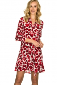 Dante 6 | Dress with leopard print Jelson | red  | Picture 2