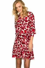 Dante 6 | Dress with leopard print Jelson | red  | Picture 4