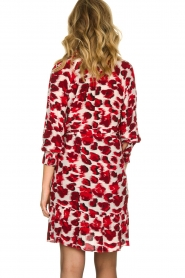 Dante 6 | Dress with leopard print Jelson | red  | Picture 5