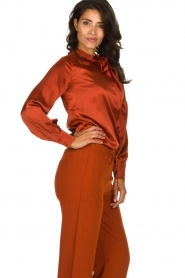 Dante 6 | Silk blouse Anaise | rust brown  | Picture 4
