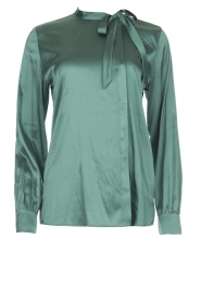 Dante 6 | Silk blouse Anaise | groen  | Picture 1