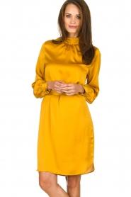 Dante 6 |  Dress with belt Leto | ocher yellow  | Picture 2