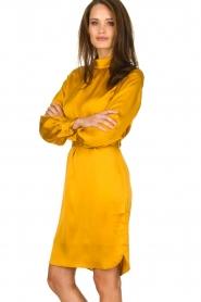 Dante 6 |  Dress with belt Leto | ocher yellow  | Picture 4
