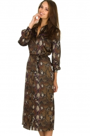 Dante 6 |  Dress with snake print Poween | brown  | Picture 5