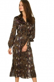 Dante 6 |  Dress with snake print Poween | brown  | Picture 4