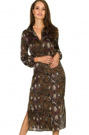 Dante 6 |  Dress with snake print Poween | brown  | Picture 2