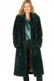 Dante 6 |  Faux fur coat Iboh | green  | Picture 2