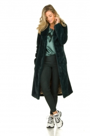Dante 6 |  Faux fur coat Iboh | green  | Picture 3