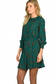 Dante 6 |  Printed dress Dolly | green  | Picture 5