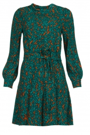 Dante 6 |  Printed dress Dolly | green  | Picture 1