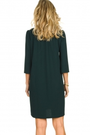 Les Favorites | Dress Nadia | green  | Picture 6