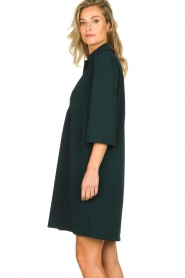 Les Favorites | Dress Nadia | green  | Picture 5
