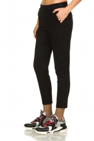 JC Sophie |  Suede look pants Bunny | black  | Picture 4