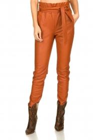 Dante 6 | Leather pants Duncan | camel  | Picture 2