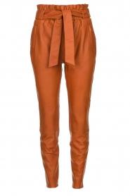 Dante 6 | Leather pants Duncan | camel  | Picture 1